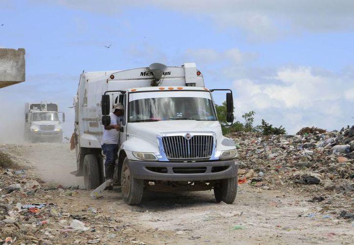 La construcción de un nuevo espacio debe cumplir con la Norma Oficial Mexicana 083. (Ángel Castilla/SIPSE)