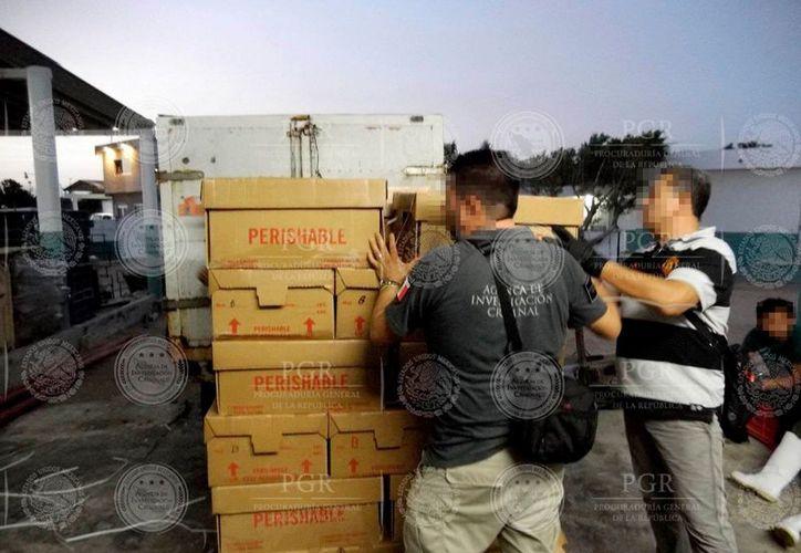 En cajas estaba almacenado el producto ilegal (pepino de mar) en una congeladora de Dzilam de Bravo, Yucatán. (Cortesía PGR)