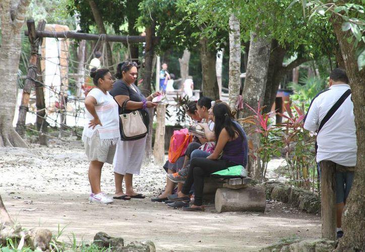 El ingreso de las personas beneficiarias varía de un mínimo de dos mil 709 pesos hasta un máximo de cuatro mil 109 pesos. (Sergio Orozco/SIPSE)