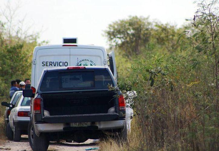 Sobre este caso, el cuerpo fue hallado en una brecha de Flamboyanes. (SIPSE)