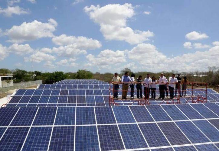En terrenos de Felipe Carrillo Puerto se desarrollará un proyecto de generación de energía renovable. (Redacción)