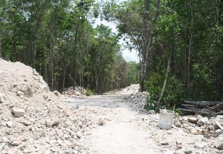 El proyecto proponía la construcción de  viviendas en armonía con el medio ambiente.  (Octavio Martínez/SIPSE)