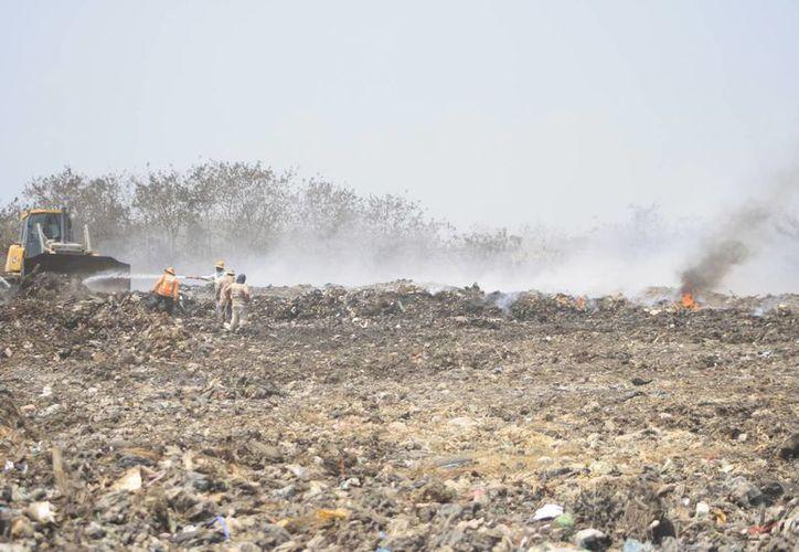 El tema del basurero municipal se ha agravado en los últimos dos meses. (Paloma Wong/SIPSE)