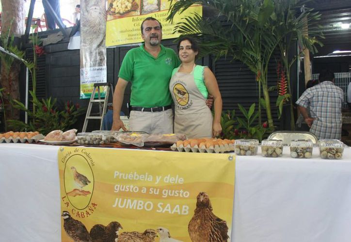 En Playa del Carmen se producen hasta 13 mil codornices a la semana, que en su mayoría se comercializan fuera de la entidad.  (Carlos Calzado/SIPSE)