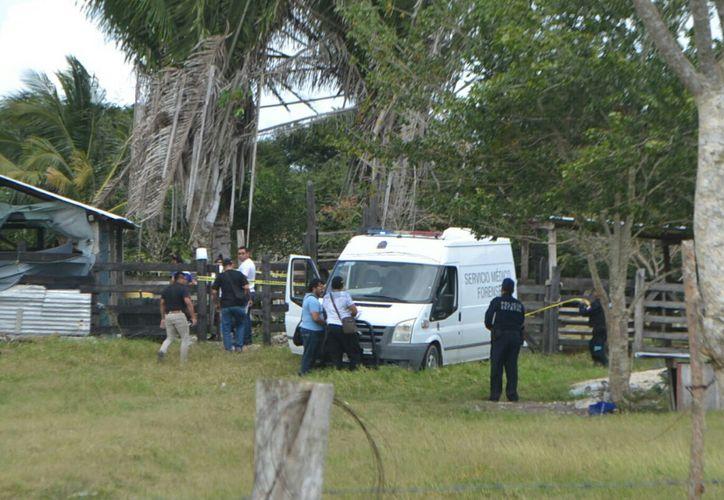 Personal del Semefo se hizo cargo del levantamiento del cuerpo; agentes ministeriales iniciaron investigación. (Foto: Redacción/SIPSE)