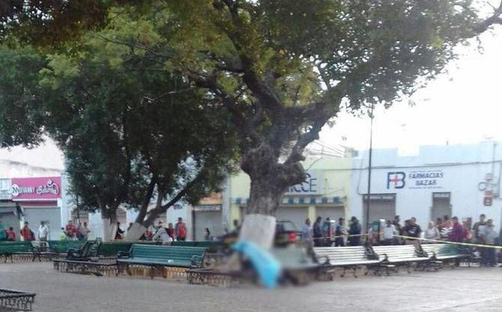El cuerpo de Erick A. D. M. quedó sin vida en una banca del parque Eulogio Rosado y fue descubierto por los transeúntes a las primeras horas del 17 de febrero pasado. (Archivo/Milenio Novedades)