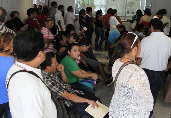 Miles de personas acudieron a la Dirección de Tránsito en Chetumal a realizar sus trámites. (Harold Alcocer/SIPSE)
