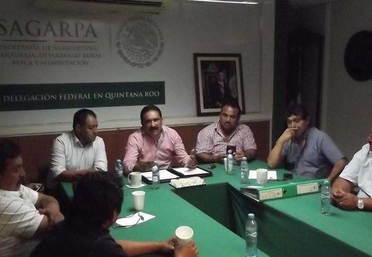 Los ejidatarios conocieron los avances de los programas de la Sagarpa. (Edgardo Rodríguez/SIPSE)