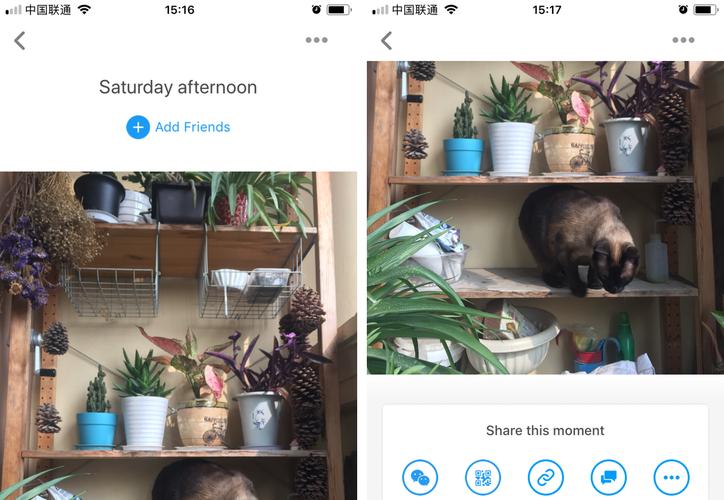Facebook lanzó en China, de forma anónima, Colorful Balloon una app para compartir fotografías. (Milenio).