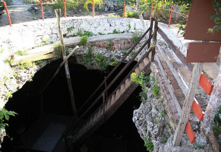 Los cenotes que se encuentran ubicados en la Península de Yucatán son los más estudiados del mundo. (Luis Soto/SIPSE)