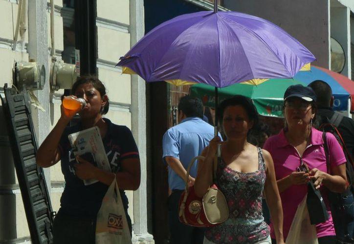 El calor de al menos 40 grados por la tarde seguirá siendo algo normal en Yucatán. (José Acosta/Milenio Novedades)