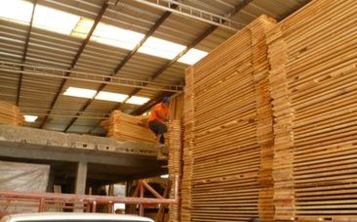 Estos casi 100 metros cuadrados de madera no fueron acreditados legalmente por sus  dueños. (Profepa)