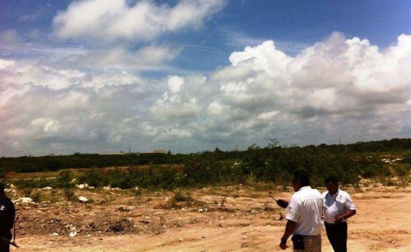 El Cabildo ratificó la multa de $3 millones para el hotel Grand Coral por rellenar manglar. (Daniel Pacheco/SIPSE)