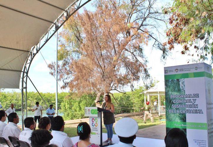 El programa fue presentado en el marco del Día Internacional de la Defensa del Mangle. (Cortesía)