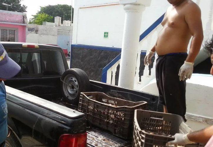 Limpian la camioneta incautada. (Milenio Novedades)