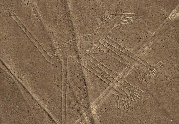 Imagen de un perro, una de las figuras que forman parte de las lineas de Nazca. (EFE/Archivo)