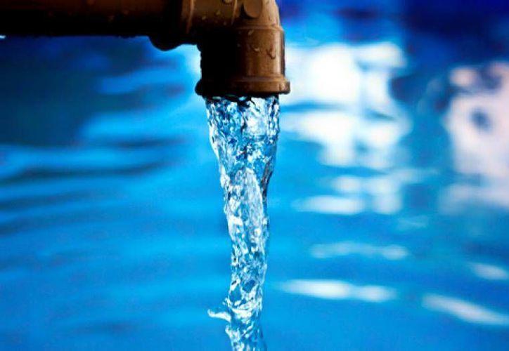 El programa de la agrupación Amigos de Sian Ka'an busca crear conciencia sobre el cuidado del agua. (cuidadodelagua.com)
