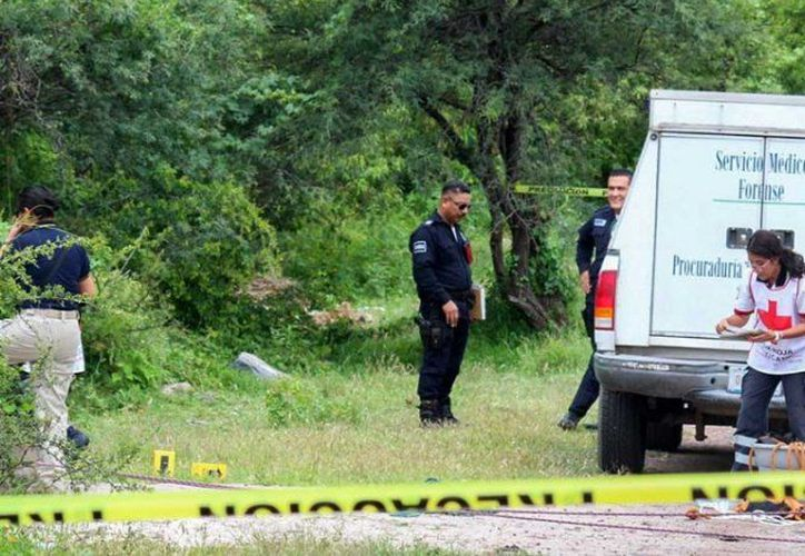 El esposo de una de ellas encontró los cuerpos en un camino. (@DiarioPresente)
