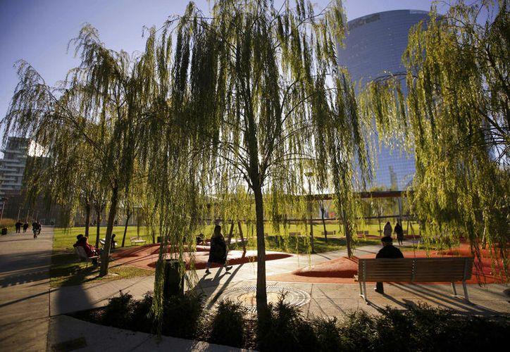 Las seis naciones con el mayor espacio para plantar nuevos árboles son Rusia, Estados Unidos, Canadá, Australia, Brasil y China. (AP Foto/Luca Bruno)