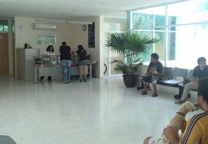 Los servicios y la atención de este hospital se ofrece por médicos titulados y especialistas. (Uady)