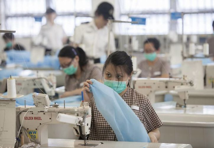 La gripe aviar H7N9 ya ha causado la muerte de 32 personas. (Archivo/EFE)