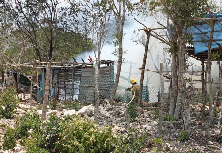 Hay pugna de intereses de particulares en terrenos invadidos. (Adrián Barreto/SIPSE)