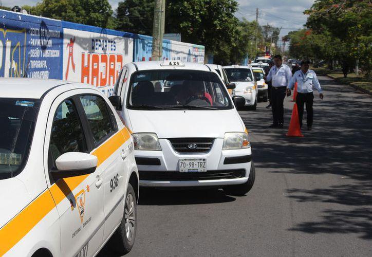 Autoridades municipales y estatales realizaron hoy un operativo para verificar la operación de choferes de servicio público en Chetumal. (Joel Zamora/SIPSE)
