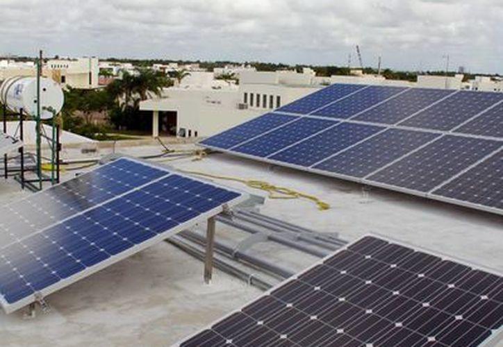El despertar de las energías renovables en Yucatán se ha dado desde hace un lustro. (Milenio Novedades)