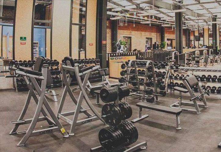 Imagen tomada de la página web de los gimnasio Sport City, 13 de los cuales fueron clausurados por Profeco. (sportcity.com.mx)