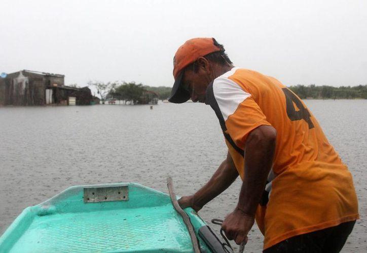 Los recursos e instrumentos de aplicación contribuirán a estimular el incremento de la oferta de productos acuícolas al alcance de la población. (Archivo/Notimex)