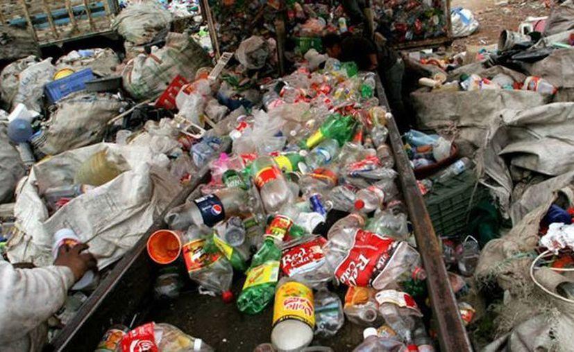 De los 2.6 millones de toneladas de residuos que genera la industria, cerca de 800 mil toneladas son de PET. (expansion.mx)