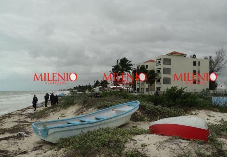 """El hallazgo fue frente a los condominios denominados """"Pluma y Lápiz"""", en Progreso, Yucatán. (Fotos: Gerardo Keb/ Milenio Novedades)"""