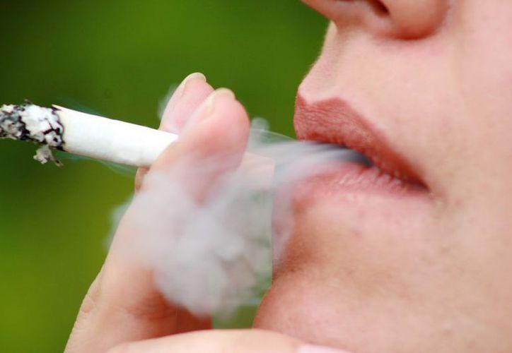 Los científicos británicos afirmaron que la población debe tener conciencia que ciertos estilos y hábitos de vida. (blogspot.mx)