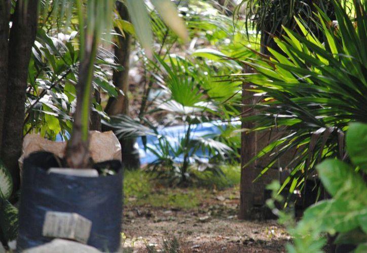 El cuerpo fue hallado sin vida, en el camellón central de la avenida Chac Mool. (Eric Galindo/SIPSE)