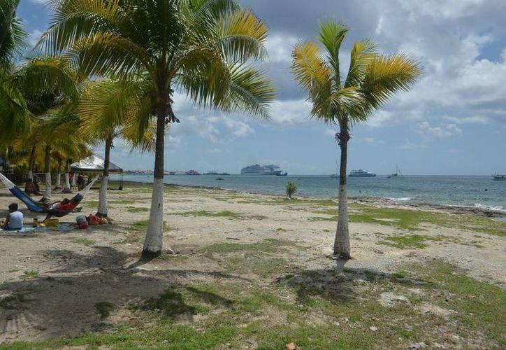Ante la falta de espacios libres en la zona costera, el gobierno municipal construirá centros recreativos en predios que cedió la Administración Portuaria Integral de Quintana Roo. (Gustavo Villegas/SIPSE)