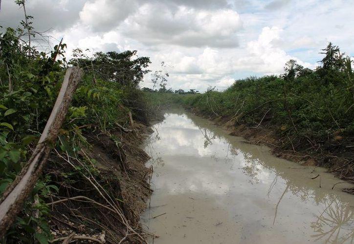 La tarde de ayer el nivel del río era de cinco metros con 60 centímetros. (Edgardo Rodríguez/SIPSE)