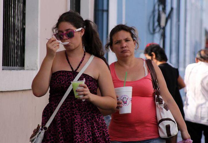 Autoridades recomiendan tomar precauciones ante el intenso calor. (Milenio Novedades)