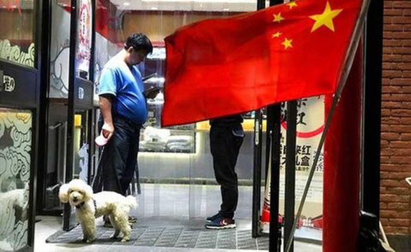 La ciudad de Wenshan, en la provincia de Yunnan,  ha sido calificada como la más restrictiva para quienes tienen mascotas. (Excélsior)