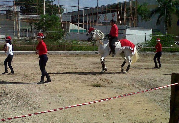 Los equinos que protagonizan la <i>exhibición de ballet</i> pertenecen a la Finca Ecuestre la Doma A.C. (Milenio Novedades)