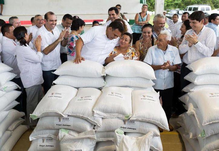 El Gobernador encabezó la entrega de semillas de frijol Jamapa en Tahmek. (Milenio Novedades)