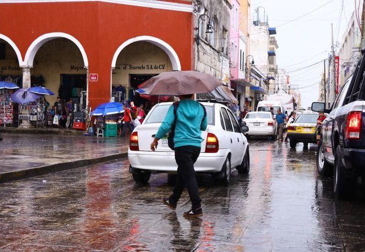 Ayer la lluvia llegó a la capital yucateca, acompañada de viento de hasta 42 kilómetros por hora. (Milenio Novedades)