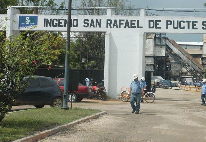 Los cañeros se movilizaran para tomar el ingenio San Rafael de Pucté, sobre todo el área de bodegas de azúcar, para impedir que salga algún bulto, para generar presión en el precio de venta del saco. (Edgardo Rodríguez/SIPSE)