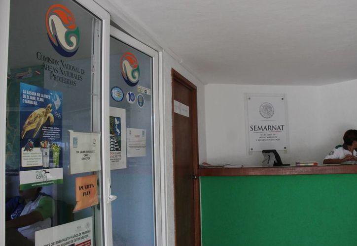 Deben entregar ante la Semarnat el proyecto del balneario para que sea evaluado. (Consuelo Javier/SIPSE)