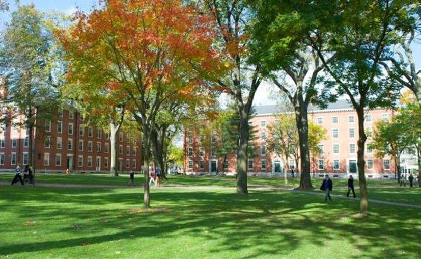 Al menos una decena de estudiantes que ya habían sido admitidos en la Universidad de Harvard fueron 'expulsados' por participar en un grupo de Facebook con publicaciones racistas. (rollingout.com)