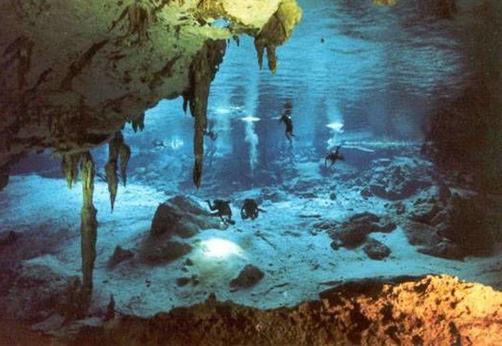 Los hallazgos hechos en cenotes de Tulum divulgados recientemente, confirman que Quintana Roo es clave para reconstruir la historia de América.  (Internet/www.cenotedosojos.com)