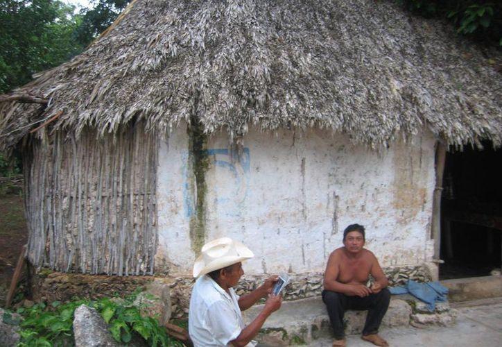 Los agricultores morelenses aseguran que hay pobreza en las comunidades, pero esta no llega a ser extrema. (Carlos Yabur/SIPSE)