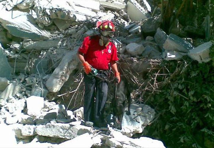 A los seis meses de nacida inició con su labor de rescate. (Redacción/SIPSE)