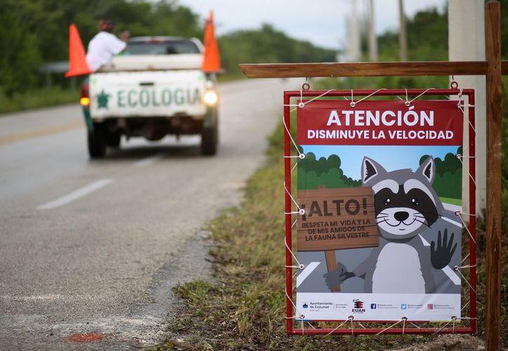 Foto: Gustavo Villegas/SIPSE