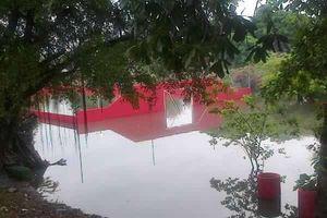 Usuarios de redes sociales reportan calles inundadas de Cancún