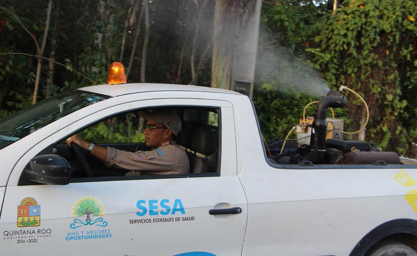 Se realizarán jornadas de fumigación en los siete municipios del norte del estado. (Paola Chiomante/SIPSE)